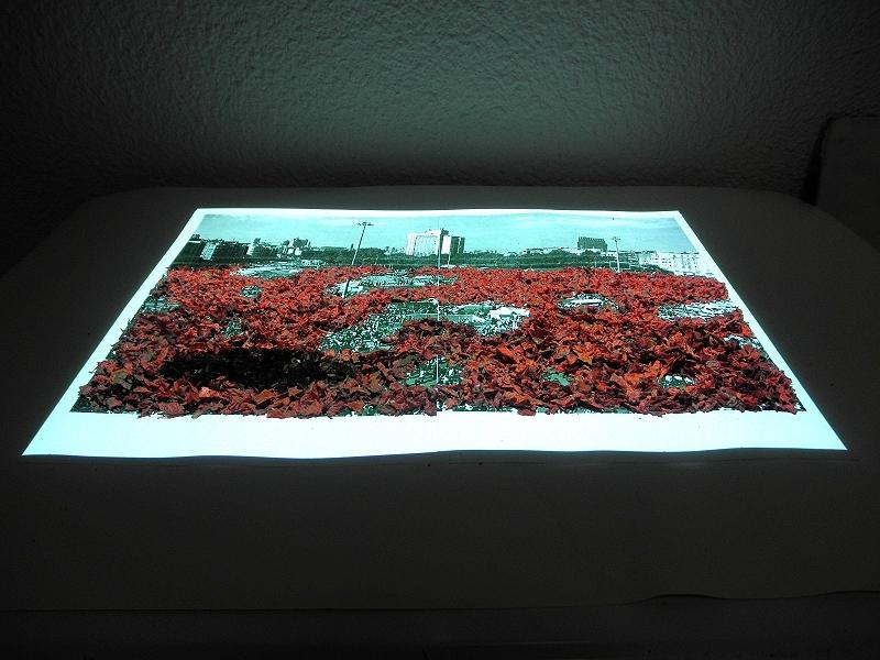 taksim-red-surveillance.800x600_0